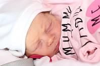 Malka Poláková z Plzně, narozená 17. června 2019, váha 2930 g, rodiče Katerini a Petr.