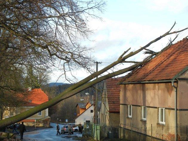 Silný vítr shodil lípu na dům v Hluboši.