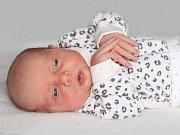 Zuzana Pacovská se narodila 17. listopadu 2018 s váhou 3,6 kg a mírou 50 cm Kateřině a Marcelovi z Milína. Doma čeká Lukášek (2).