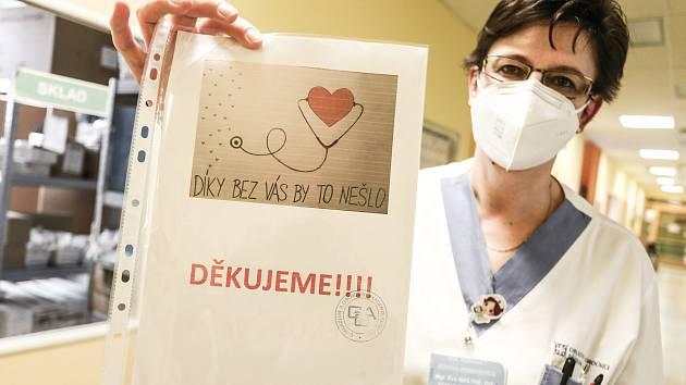 Staniční sestra JIP interních oborů příbramské nemocnice Eva Mastná.