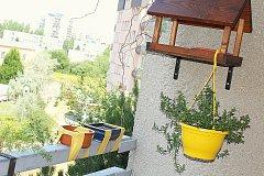 Možnost, jak na balkoně volně žijícím opeřencům dopřát vodu i koupání.
