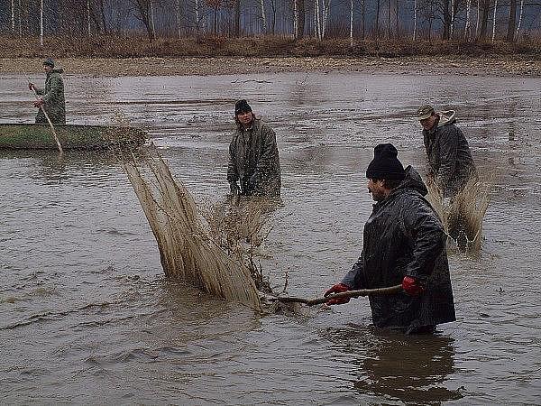 Výlov Velkého Kotelského rybníku.