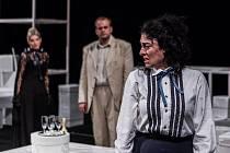 Sabina Laurinová svede v příbramském divadle boj o višňový sad.