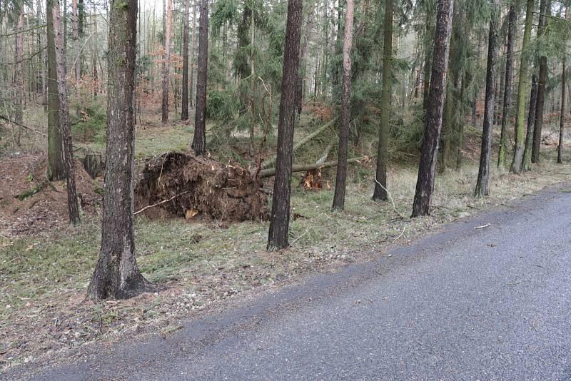 Nejčastěji hasiči na Příbramsku vyjížděli k likvidaci popadaných stromů.