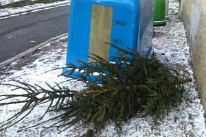 Technické služby vánoční stromky odložené u kontejnerů odvezou.