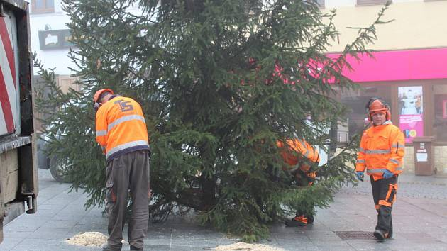 Zaměstnanci technických služeb pomocí jeřábu a pod dohledem městské policie postavili vánoční strom na Václavském náměstí v Příbrami.