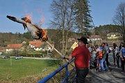 Ve vesničce Brsina u Svatého Jana na Sedlčansku se v neděli odpoledne konalo každoroční vynášení smrtky.