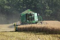 Zemědělci sklízejí na Příbramsku obilí a řepku.
