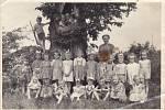 Památný strom Jilma a u něj tehdejší děti z lázské mateřské školy na výletě do přírody.