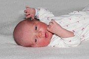 Anna Lachoutová se narodila 4. listopadu s váhou 3,15 kg a mírou 48 cm Evě a Markovi ze Sedlčan.  Doma čeká Laura (10) a Marek (2).