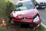 Nehoda u Dublovic 16. srpna 2019, údajně vběhnutí psa do jízdní dráhy, škoda 81 tisíc korun.