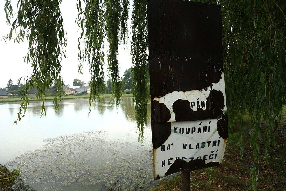 Rybník Václav ve Lhotě u Příbramě.