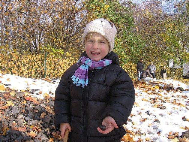 Tříletá Saša Míková z Příbrami objevila žílu.