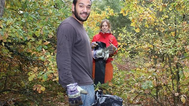Úklid lesa u Dobříše.
