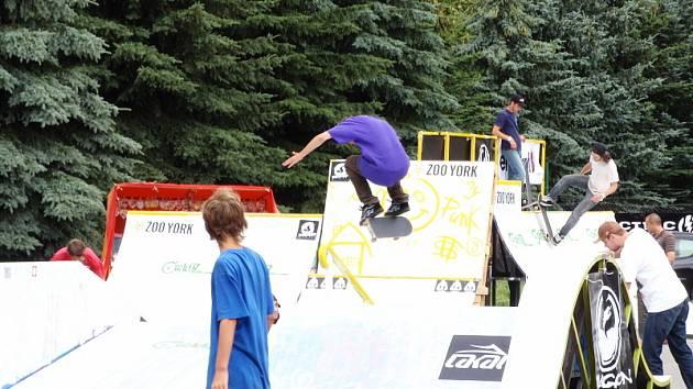 Toadstool Skateshot 2008