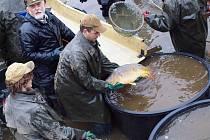 Výlov Velkého Kotelského rybníku v sobotu 6. dubna.
