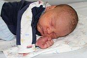 Martin Procházka se narodil 24. ledna s váhou 3,82 kg a mírou 50 cm Lence a Martinovi z Pičína. Doma už se těší sestřička Denisa (4,5).