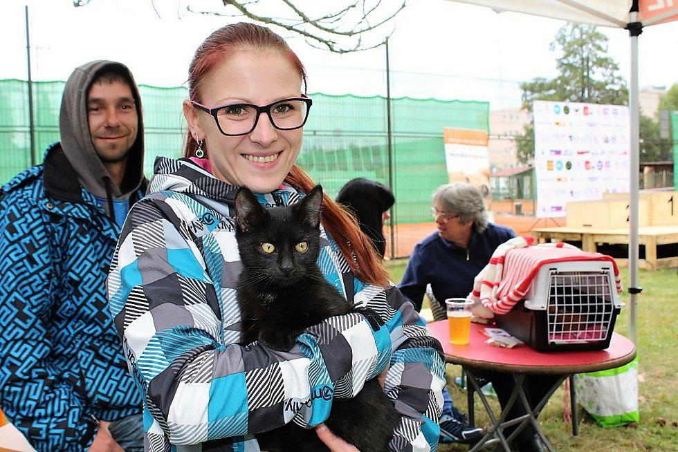 Den pro zvíře v lesoparku u Litavky v Příbrami. Darina Kučerová ze Společnosti přátel koček Příbram s nalezeným kocourkem v náručí .