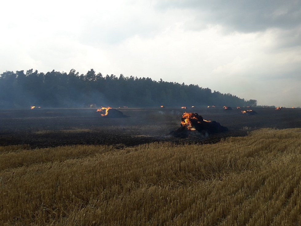 Požár pole u Podluh zasáhl i část lesa.