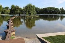 Na ostrově na Novém rybníku v Příbrami hnízdily labutě.