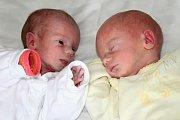 Sebastian a Viktorie Marie Vanerovi se narodili 22. Ledna Ivaně a Pavlovi z Kňovic. Sebastián měl 44 cm a vážil 1,89 kg a Viktorie Marie měřila 46 cm a vážila 1,9 kg. Doma se na sourozence již těší Honzík (6) a Rozárka (8,5).