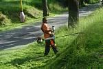 Z údržby veřejné zeleně v Příbrami.