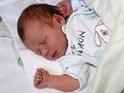 Matěj Vondrák se narodil 21. listopadu s váhou 3,333 kg a mírou 48 cm Petře a Michalovi.