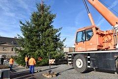 Letošní vánoční strom pochází z Lazce.