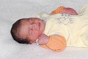 Jasmína Hadáčková se narodila 30. října s váhou 3,43 kg a mírou 51 cm Pavle a Jiřímu ze Sedlčan. Doma čeká Honzík (3) a Jolanka (7).