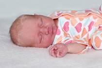 Nela Hrzalová se narodila18. prosince s váhou 3,13 kg a mírou 49 cm Martině a Lukášovi z Volenic. Doma čeká Matěj (3).
