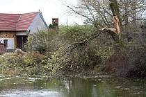 Prudký nedělní vítr odnášel střechy z domů a garáží a vyvracel kořeny stromů z podmáčené půdy.