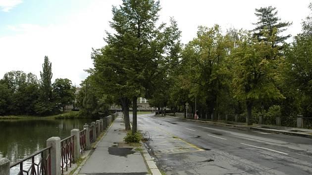 Okolí Hořejší Obory bude od září přístupné pouze pro pěší