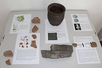 Archeologické nálezy z Krásné Hory a okolí.