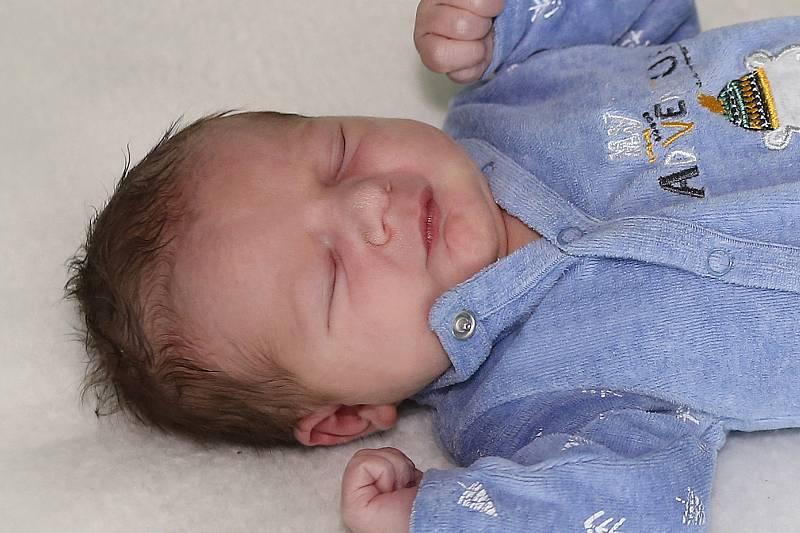 František Lojín se narodil 29. září 2021 v Příbrami. Vážil 3480 g a měřil 49 cm. doma v Praze ho přivítali maminka Simona a tatínek František