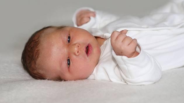 Andrea Ježková se narodila 18. května 2019 s váhou 3,79 kg a mírou 51 cm Kateřině a Davidovi z Dražky.
