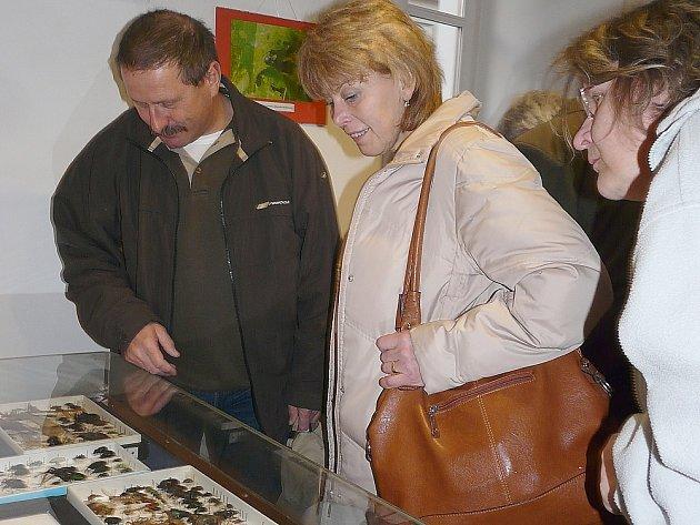 Do světa brouků nahlédli první návštěvníci. Výstava potrvá až do 4. května.
