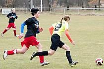 Pavlíkovské Lvice porazily v prvním jarním divizním kole žen Horní Břízu 5:1.