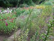 Rakovnická botanická zahrada o posvícení