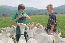 Z kozí farmy ve Skryjích