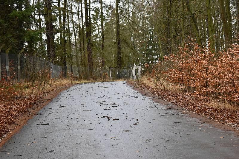 Většinu silnic zasypaly popadané větve, podobně jako u Lužné - nádraží.