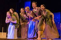 Do Rakovníka opět přijede Popelka a s ní to nejlepší z dětské divadelní scény uplynulé sezony. Letos divákům nabídne až 13 her.