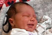 VIOLETA TANCOŠOVÁ, RAKOVNÍK. Narodila se 22. února 2020. Po porodu vážila 2,82 kg a měřila 48 cm. Rodiče jsou Anna a Šimon.