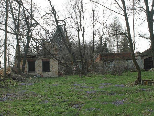 Starý hřbitov ve Mšeci