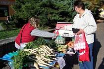 Prodej čerstvé zeleniny