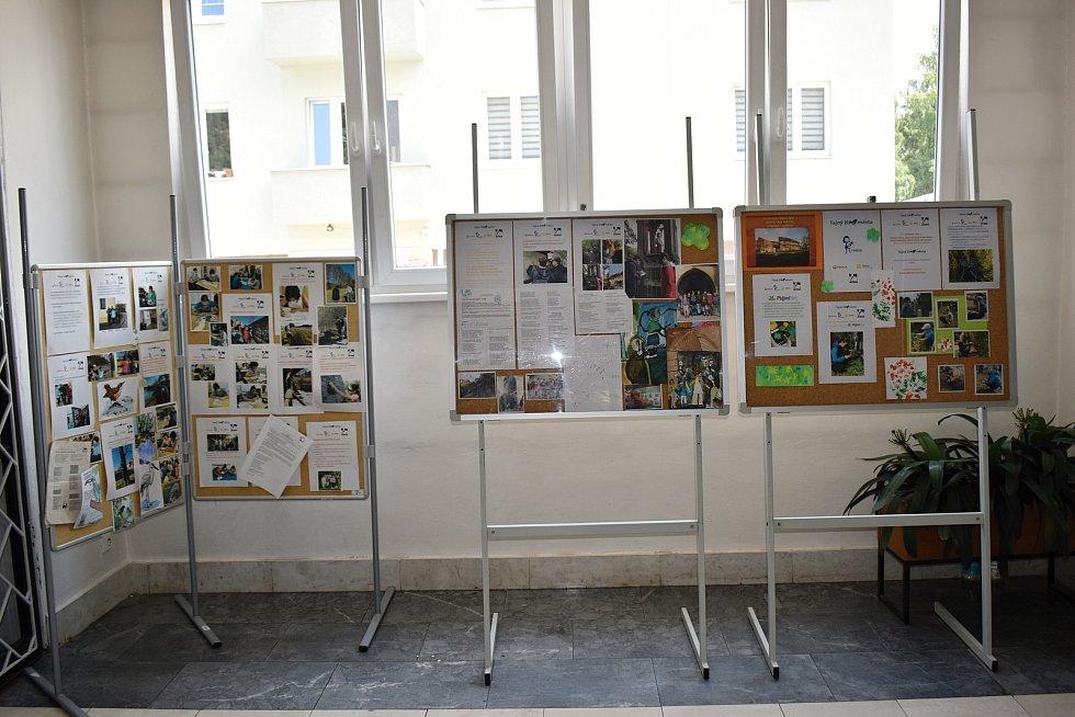 Ve vestibulu rakovnické knihovny je k vidění výstava Marie Uchytilové, ale také projekt SŠ, ZŠ a MŠ Rakovník - Tajemný život města.
