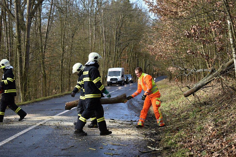 Rakovničtí hasiči v rozmezí několika minut museli odstraňovat dva padlé stromy u Senomat.