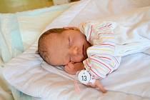 ADÉLA MACKOVÁ, LIŠANY. Narodila se 25. února 2019. Po porodu vážila 3,1 kg a měřila 49 cm. Rodiče jsou Lucie a Petr. Bratr Matyáš.