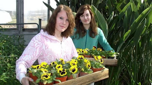 Zahradníci ISŠ Jesenice už mají ve sklenících jaro
