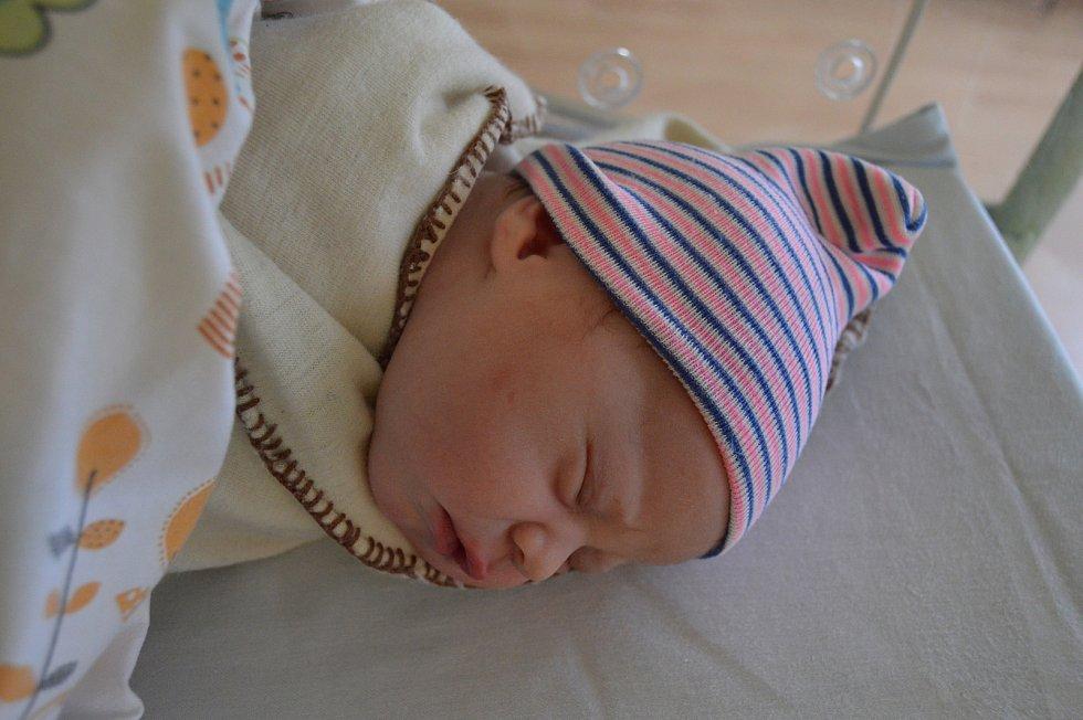 VIOLA SMEJKALOVÁ, LITOMĚŘICE. Narodila se 13. listopadu 2019. Po porodu vážila 3,4 kg. Rodiče jsou Martina a Jiří. Bratr Jiřík a Bořík.