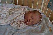 ONDŘEJ PAVELKA, PAVLÍKOV. Narodil se 12. prosince 2018. Po porodu vážil 3,2 kg a měřil 50 cm. Rodiče jsou Renata a Václav.